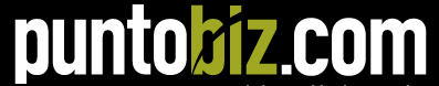 Logo of puntobiz.com.ar