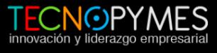 Λογότυπο του tecnopymes.com.ar
